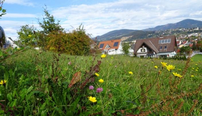 Baugrund mit Fernblick  8160 Weiz