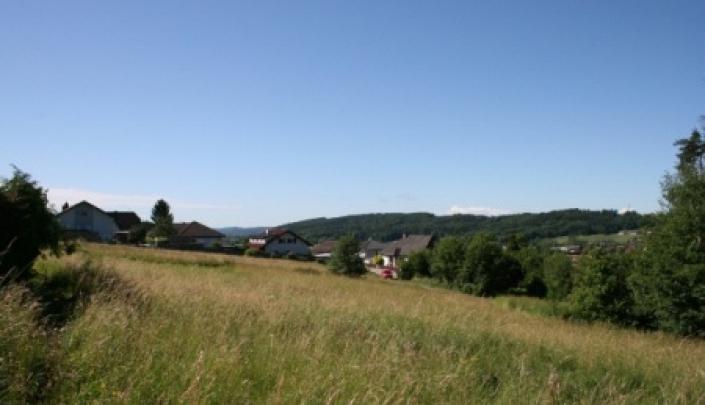 BAUGRUND IN MALERISCHER UMGEBUNG  8160 Weiz/Krottendorf